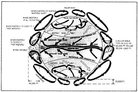 pattern of cell theory world winds