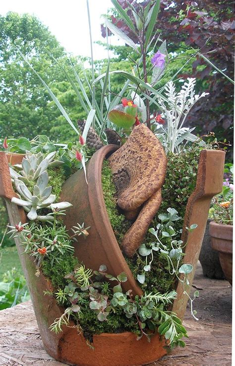Gardening Forum by Miniature Gardening Forum This Year S Community Plant