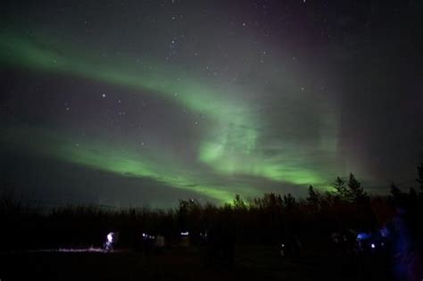 whitehorse yukon northern lights northern lights picture of borealis northern