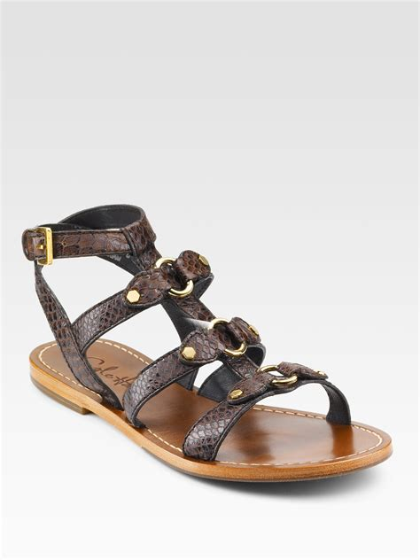 brown gladiator sandals cole haan deandra gladiator sandals in brown lyst