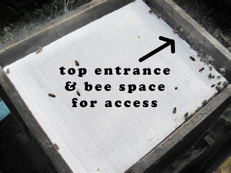 top bar hive entrance location winter insulation for bee hives brookfield farm bees