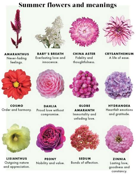 Tattoo Flower Meanings And Symbolism | summer flowers and their meanings visit www edenflorist