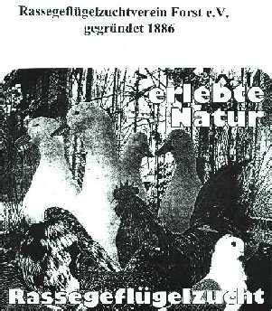 Nahrung Der Vögel 4079 by Stadt Forst Lausitz Stadtinformation Vereine