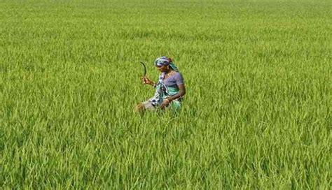 section 151 crpc mandsaur violence mp cm chouhan to visit farmer s