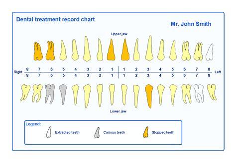 dental chart veterinary dentistry diagram dogs diagram elsavadorla
