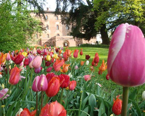 giardini in fiore foto mercatini e serre giardini e ville viaggio nell italia
