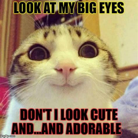 Meme Eyes - memes face big eyes pictures to pin on pinterest pinsdaddy