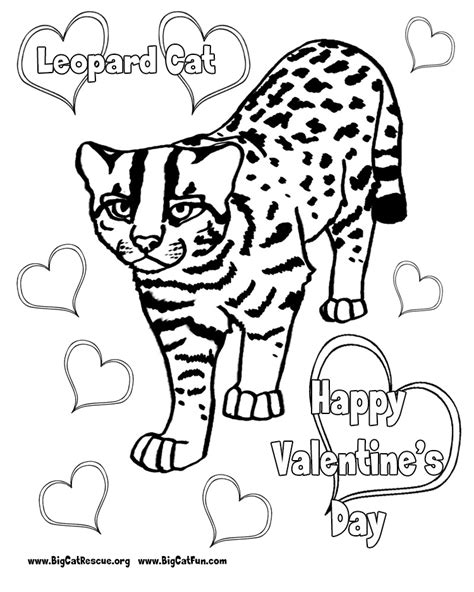 snow leopard coloring page coloring home