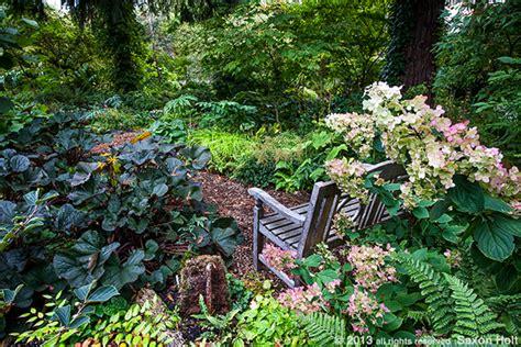 Landscape Small Backyard Woodland Garden O Byrne