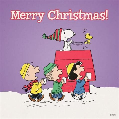 merry christmas snoopy quote pictures   images  facebook tumblr pinterest