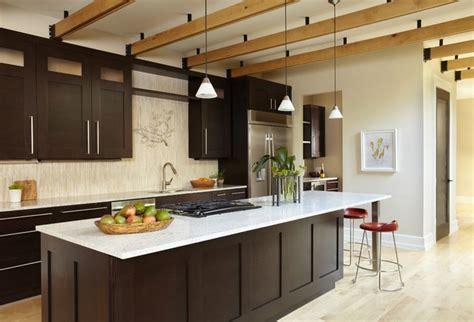 dark shaker kitchen cabinets kitchen contemporary kitchen dallas by denise