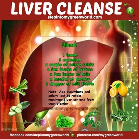 Healthy Liver Detox by Liver Detox Recipe Of Many To Pin Healthy Stuff