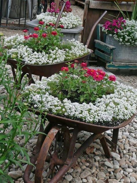 Wheelbarrow Garden Ideas Wheelbarrow Planting Flower Garden Plant Ideas Pinterest Gardens Grace O Malley And Flower