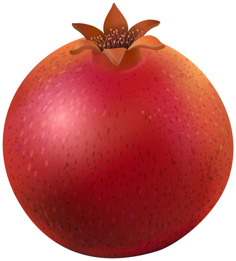 clipart picture pomegranate png clip image gallery yopriceville