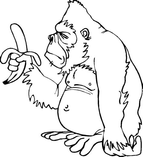 kids n fun com 7 coloring pages of bokito the gorilla