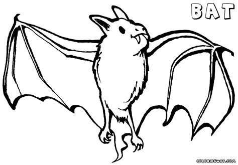 bat coloring page bat coloring pages coloring pages to and print