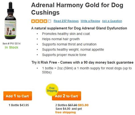treatment for cushings in dogs cushing s disease adrenal gland dysfunction herbal remedy herbal remedies