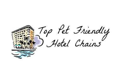 friendly hotel chains top pet friendly hotel chains karla s pet care picks