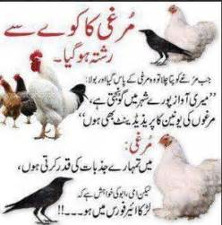 Latest funny comedy urdu hindi quotes 2014 scoopak