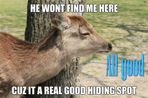 Funny Deer Memes - funny deer hunting memes