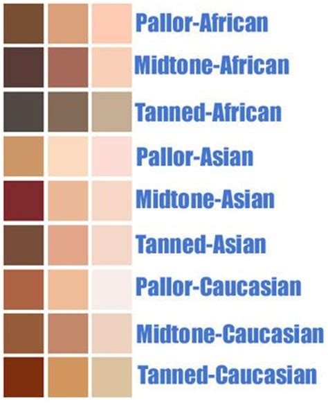 25 trending skin colors ideas on skin tone warm colours and find y