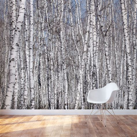 wall murals of trees white birch trees wall mural