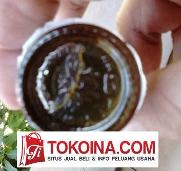 Minyak Tawon Yang Asli jual minyak tawon atau minyak gosok cap tawon