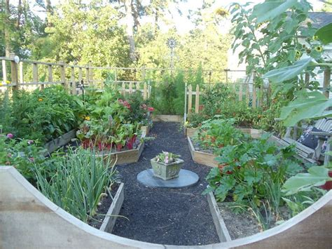 vegetable garden definition 169 best images about garden beds on gardens