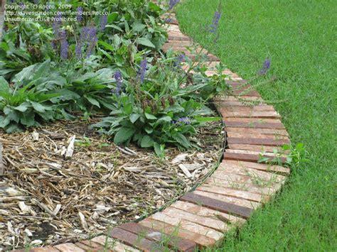 Garden Bricks Brick Laminate Picture Brick Garden Edging