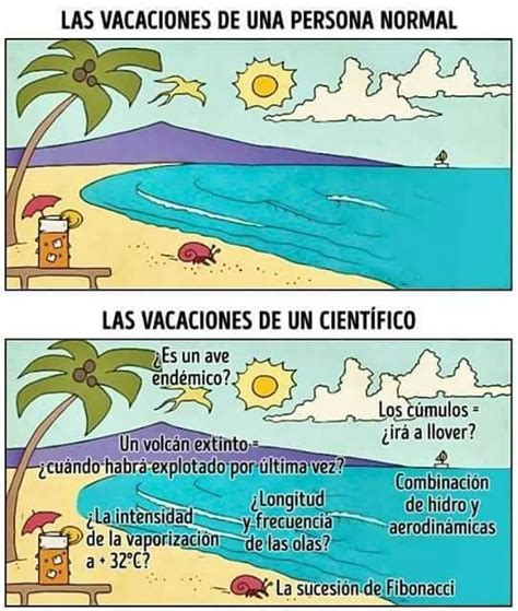 imagenes de vacaciones chuscas best 25 memes de vacaciones ideas only on pinterest