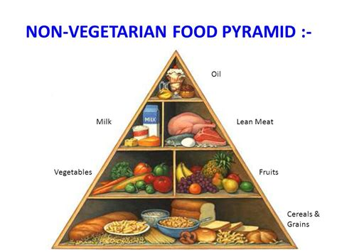 non vegetarian foods life style diseases and preventive health ppt video