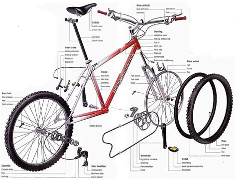 bicycle parts diagram hub n ride a basic knowledge about our bike the anatomy