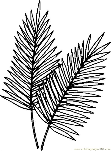 palm branch template palm tree leaves template 718 clipart best clipart best