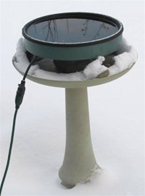 best bird bath heater