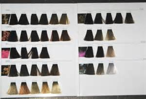 inoa hair color inoa color swatches brown hairs