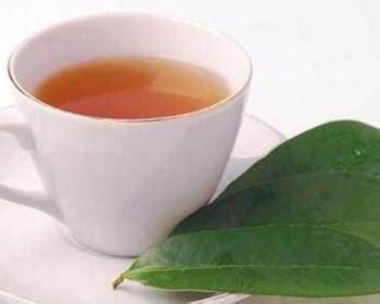 Teh Daun Sirsak 35 manfaat daun sirsak begini cara membuat obatnya