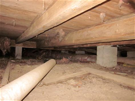 pier and beam foundation insulation pier and beam homes pier and beam exclusions critter ridder texas austin tx