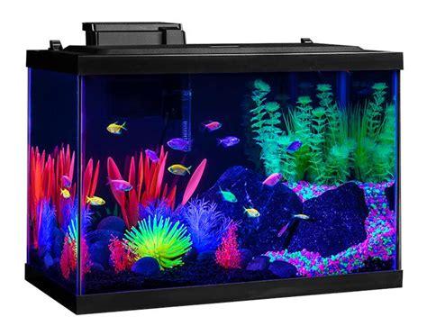 Neon Aquarium Decorations by Aquarium Tank Kit 20 Gallon Glow Fish Neon Color Starter