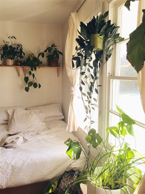 good plants for bedroom 13 tips and tricks on how to decorate a small bedroom
