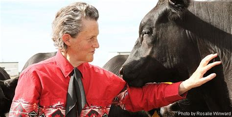 general psychology temple grandin seeing in pictures