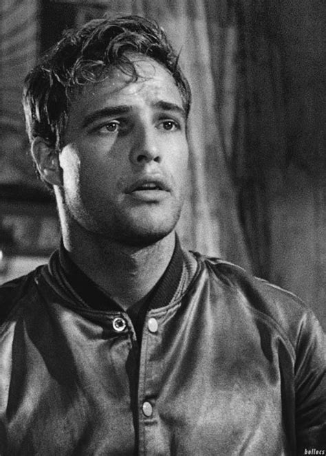 Brando Has A Something For The by 17 Best Images About Marlon Brando On