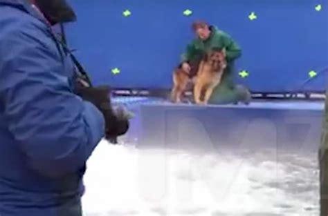 a s purpose animal abuse a s purpose accused of animal abuse on set
