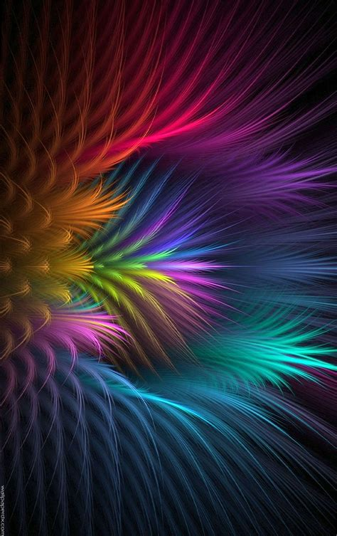 hd wallpaper for android flower feather flower abstract mobile wallpaper full hd android