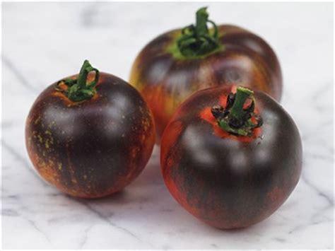 Benih Tomat Indigo Apple Paketan indigo apple tomato baker creek heirloom seeds