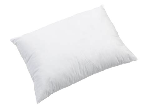 Dust Mites In Pillows by Dust Mite Allergy Standard Size Pillow