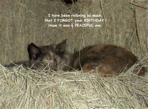 Belated Birthday Kitty Free Miss You Ecards Greeting