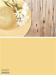 sherwin williams yellow paint color jonquil sw 6674