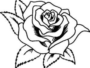imagenes de rosas grandes para dibujar dibujos de flores hermosas para descargar imprimir y