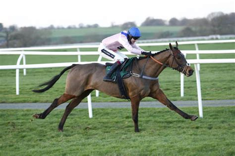 A Surefire Winner by Wincanton 3 30 Tips Nudge A Quot Surefire Quot Winner