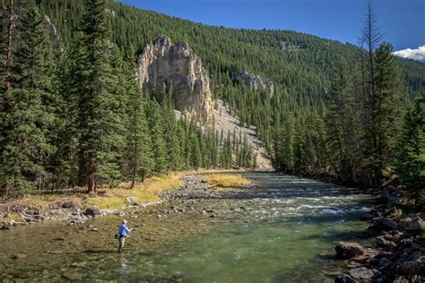 fishing the gallatin river montana gallatin river glacier to yellowstone